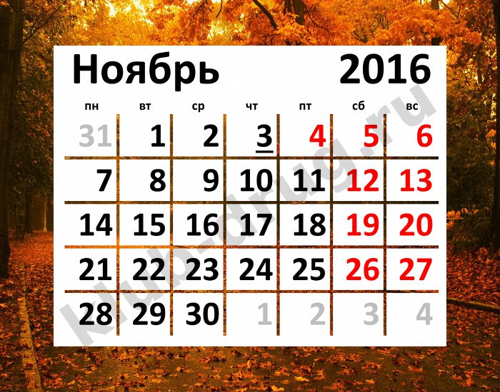 Смотреть Праздники в ноябре в 2019 году. Ноябрьские выходные видео