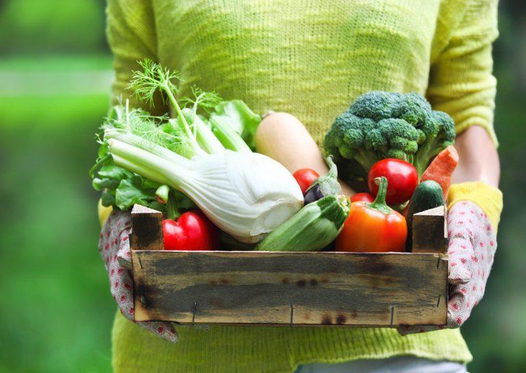 Ел Только Овощи Похудела. Похудение на овощах и фруктах, на сколько можно похудеть за месяц?